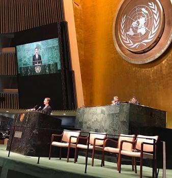 Una Bebe alle Nazioni Unite